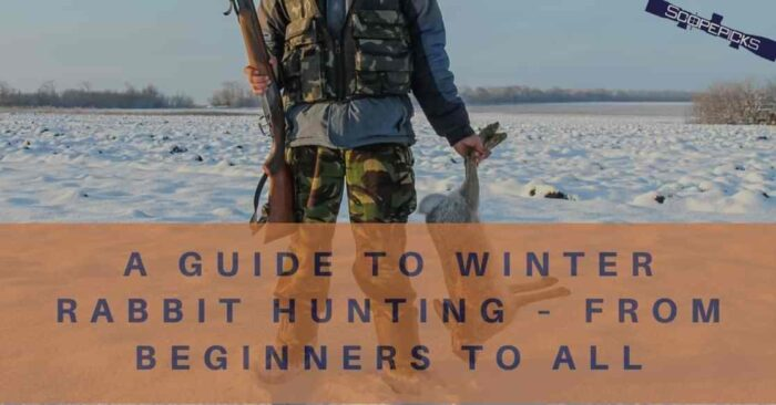 winter-rabbit-hunting