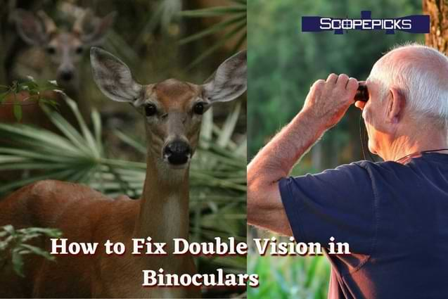 how to fix double vision in binoculars